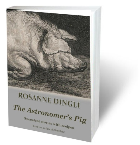 The astronomer's pig cover